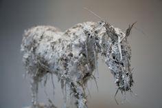 Nicola Hicks – Closed up – Life study – 2012 / sculptures Chelsea School Of Art, Banksy Artwork, Art Nouveau, Plaster Sculpture, Plastic Art, Strange Photos, Ceramic Animals, Animal Sculptures, Horse Art
