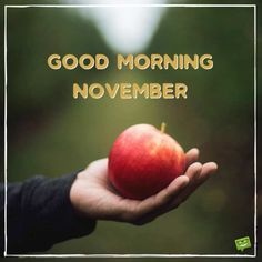 When the of the month has arrived, share a warm morning pic with the ones you love and care about and welcome a lovely new month. Welcome November, Hello November, New Month, Good Morning Good Night