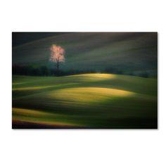 Trademark Fine Art 'Emerging From Dawn' Canvas Art by Marek Boguszak, Size: 30 x 47, Green
