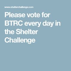 Please vote for BTRC every day in the Shelter Challenge Boston Terrier Rescue, Shelter, Challenges, Canada, Day