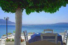 Nea Sryra beach in Evia island , Greece Athens Airport, Sardinia Italy, Greece Islands, Hotel Reservations, Romantic Vacations, Outdoor Furniture Sets, Outdoor Decor, Big Island, Great Photos