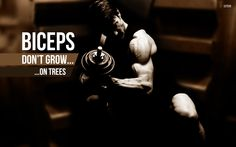 """In bodybuilding everybody wants big biceps, as they are a most impressive area to develop, and given their high visibility and superficiality, signify strength perhaps like no other body part. When someone asks, """"flex a muscle"""" they do not want to see your calves. It is the biceps that are usually requested."""