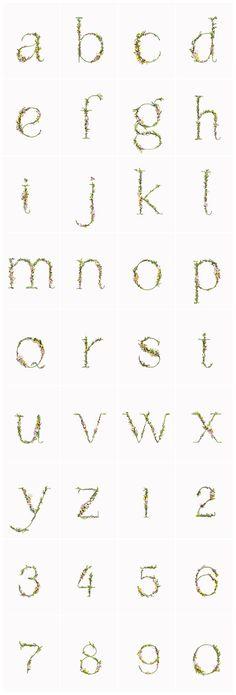 Experimental Typography by Alice Mouoru