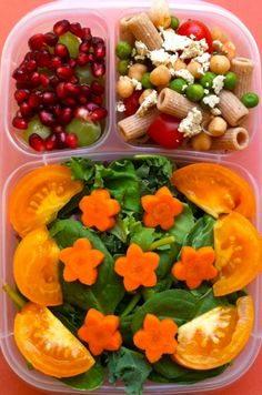 Baby greens salad with star carrots, heirloom tomatoes, pasta and veggy salad and grapes with pomegranate seeds