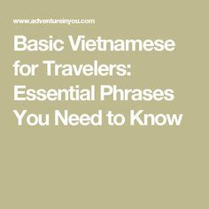 Basic Vietnamese for Travelers: Essential Phrases You Need to Know