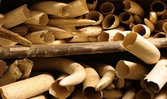 Elephant tusks stored away under extreme security measures in the ivory stock pile of the Kruger National Park, South Africa. Mozambique police say they seized over a tonne of ivory and rhino horns