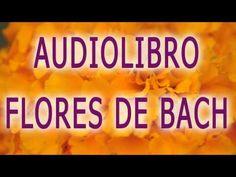 Manual Completo FLORES DE BACH - Curación, audiolibro, como sanar con flores de bach - YouTube