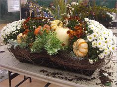 Fall window box, which features chrysanthemums, dusty miller, kale, pumpkins, gourds, and willow branches for height. Angel vine outlines the box. Dusty miller and kale will last into the winter, he said, while the gourds (which were placed with stakes) will last around a month.