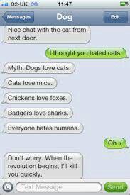 Kinda funny