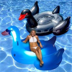 Swimline Light-Up Swan Combo Pack Bird Floats for the Swimming Pool, 2-Pack, Multicolor