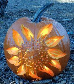 Pumpkin carved into a Sunflower Jack 'o Lantern! Awesome!
