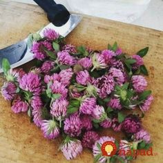 Health Advice, Organic Beauty, Diy And Crafts, Floral Wreath, Remedies, Health Fitness, Hair Beauty, Detox, Herbs