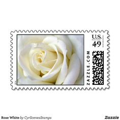 Rose White Postage Stamps