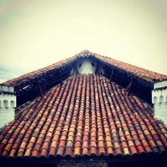 Guatav