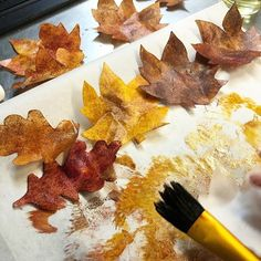 Capture the beauty of fall with these wafer paper leaves, condition using paper potion. Fall Theme Cakes, Fall Cakes, Themed Cakes, Wafer Paper Flowers, Wafer Paper Cake, Edible Picture Cake, Paper Leaves, Cake Toppings, Autumn Theme