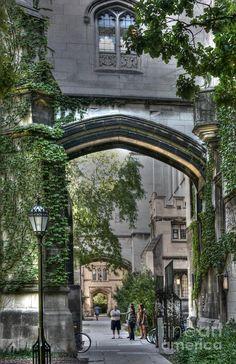 university of chicago quadrangle