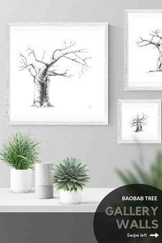 Four different layout ideas for hanging four square pictures in your home. Loving these artworks? Browse my Etsy store for a range of wall art prints and print sets of baobab trees. #etsy #DIY #livingroom #bedroom #ideas #simple #large #blackandwhite #joshua #desert #nature #prints #decor #bathroom #kitchen #minimalist #sets #minimal #modern #tree Grey Wall Art, Black And White Wall Art, Artwork For Living Room, Living Room Pictures, Wall Art Decor, Wall Art Prints, Baobab Tree, Plant Drawing, Gallery Walls