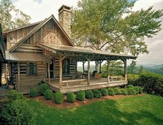 This? YES!!! I love EVERYTHING about it! Large porch, chimney, dimension, nice areas to hang out on the roof....YES!