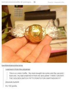 I CAUGHT THE GOLDEN SNITCH!!