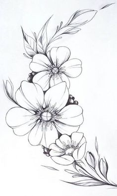 Floral lettering flower line drawings, flower sketches, drawing sketches, art drawings, realistic Easy Flower Drawings, Beautiful Flower Drawings, Flower Art Drawing, Simple Line Drawings, Flower Sketches, Pencil Art Drawings, Tattoo Drawings, Easy To Draw Flowers, Simple Flower Drawing