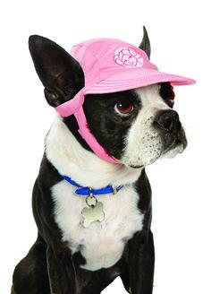 STAR WARS ™ Princess Leia ™ Dog Hat