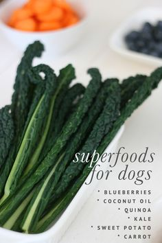 One of the BEST things you can do is add more leafy greens to your dog's diet. Kale is a great choice - rich in iron, calcium and vitamins A, C and K. --- Superfoods for Dogs Homemade Dog Treats, Pet Treats, Dog Treat Recipes, Dog Food Recipes, Dogs Tumblr, Dog Care Tips, Pet Care, Pet Tips, Healthy Pets
