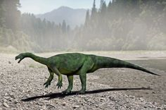"""Aardonyx Only """"diagnosed"""" in 2009 based on two juvenile skeletons, Aardonyx was an early example of a prosauropod--the plant-eating precursors of the huge sauropods of the late Jurassic period. Early Jurassic period, in Woodlands of Southern Africa. Jurassic World, Jurassic Park, Tyrannosaurus Rex, Prehistoric Animals, Afrikaans, Fossil, South Africa, Beast, Creatures"""