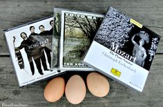 Music in your coop? #Chickens Want more eggs? Read! www.FreeHenHousePlans.net http://www.eFowl.com/?Click=32918