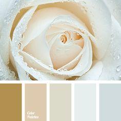 Color Palette #3828
