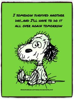 I somehow survived another day and I'll have to do it all over again tomorrow.