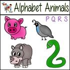 High quality graphics and black/white images are included. This set includes: P-pig Q-quail R-rhino S-snake Check out other animal clip art avail. Free Clipart For Teachers, Black N White Images, Black And White, Zoo Phonics, Classroom Clipart, Coloring Pages, Alphabet, I Shop, Clip Art
