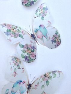 4 Shabby Chic Pastel Budgies in Trailing Flowers Wall Stickers Birds & Flowers Butterflies Butterfly Bedroom, Butterfly Wall Art, Butterfly Crafts, Butterfly Wallpaper, Shabby Chic Quilts, Shabby Chic Crafts, Wall Stickers Birds, Diy Fairy Wings, Trailing Flowers