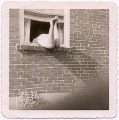 Laurence...la voisine d'en face. ..Elle oubliait souvent ses clefs. ..