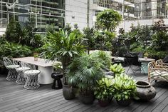 Restaurant interior with secluded garden in Hong Kong by Ilse Crawford   News…