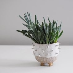 Hand-built in Brooklyn by Little Bear Pots, this unique spiky white planter will keep your beloved plants looking sharp! Each mug is unique with hand-carved bands of vertical and horizontal stripes, g