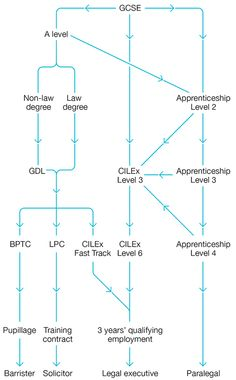 Just hover over the career diagram to reveal an outline of each stage in the process, including undergraduate law and non-law, postgraduate, apprenticeship, paralegal and more. A Level Law, Career Inspiration, Paralegal, Career Path, Law School, Lawyer, Confessions, School Stuff, Paths
