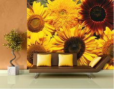 Sunflowers  http://suckhoetoday.com/
