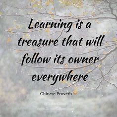 Learning is a treasure that will follow its owner everywhere ~ Chinese Proverb