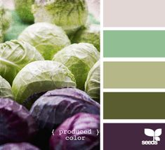 purple cabbage color palette...good for a living room?