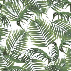 Palm — Designspiration