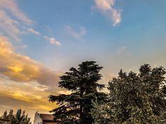 #buenosaires #argentina #atardecer #sunset #nubes #fuego #celeste #color #fotografía #photography #photographerlife #streetstyle #urban #tree #árboles #arbol #sky #contrast #photooftheday #instgram #instagood #pictures #foto #clouds #etc http://www.butimag.com/etc/post/1482203075279332783_1353399771/?code=BSR19gLBCWv