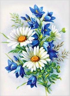 r… - Malerei Daisy Painting, China Painting, Fabric Painting, Flower Images, Flower Pictures, Flower Art, Flower Fairies, Watercolor Flowers, Watercolor Paintings