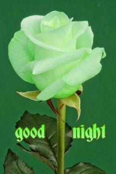 Good night - Kishor Ekatpure - Google+