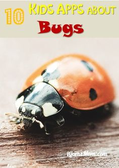 10 Kids Apps About Bugs, Kids learn about insects or bug themed academic games, fun and educational.