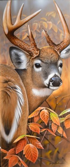 ANGEL'S HAND diamond embroidery diamond mosaic diy diamond painting needlework canvas Home Decoration animal paintings Wildlife Paintings, Wildlife Art, Animal Paintings, Animal Drawings, Art Drawings, Deer Paintings, Deer Photos, Deer Pictures, Animals Beautiful