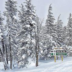 Today is #myday  . Którędy jechać? Prawie jak na życiowym zakręcie . . . . . .  #winter #zima #kanadasienada  #śnieg #chill #snow #wintertime #sky #mountains #winterfun #thebestday  #becausecanada #sky #mountains #winterfun #summer #sunnyday #explorebc #beautifulbc #explorecanada #unlimitedcanada #canada_true #imagesofcanada #travelgram #skiing #snowwhite #supernatural ##zwiedzamy #podróże #podróżuj