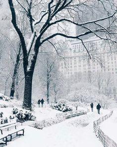 New York amb neu.