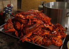 The star of Lobster Fest are these delicious lobsters from Five Islands Lobster Company.