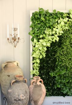 live plant wall - Woodside Decorator Show House