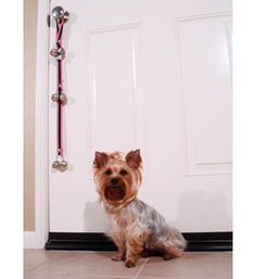 Potty Training Bells For Dogs - $22.99 from TaliaDogBoutique.com